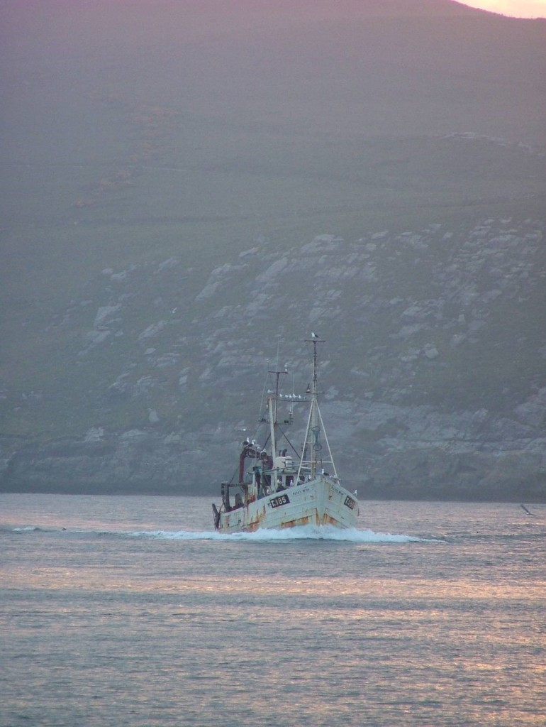 fishing boat returning to Portmagee
